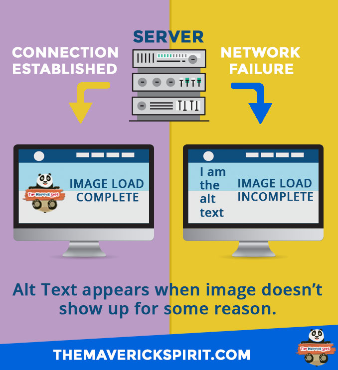 Using Alt Text for Image Optimization