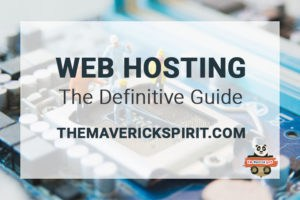 Which-website-hosting-service-you-should-choose-the-maverick-spirit