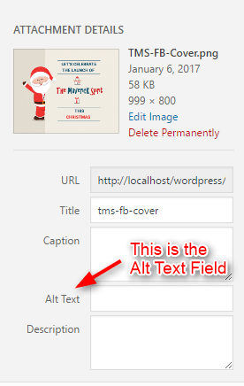 add alt text for seo in Alt-field