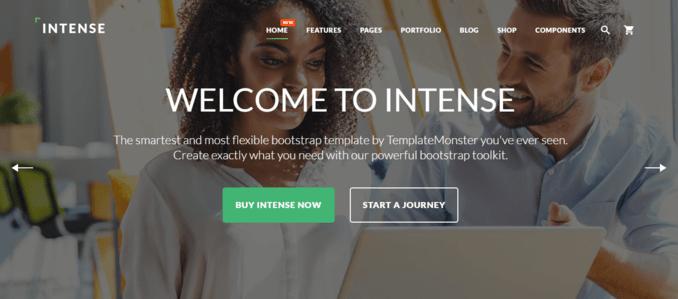 Intense-Clean-Organized-Multipurpose-Website-Template