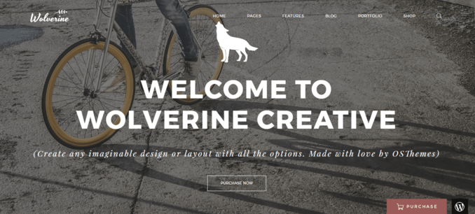 Wolverine-eCommerce WordPress Template