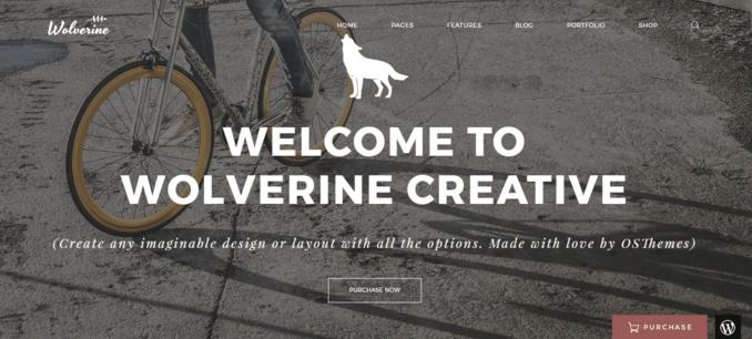 Wolverine-eCommerce WordPress Template