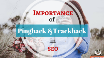 Pingback-Trackback-importance-in-seo-how to get-rid-of-spam-traffic-links-the-maverick-spirit