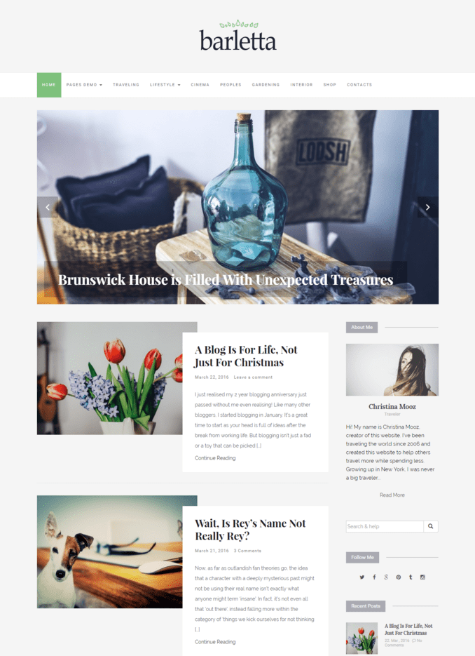 barletta-Viral-Buzz-best-Responsive-wordpress-Lifestyle-theme
