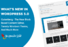what-is-new-in-wordPress-5-0-version-release-updates-features-with-screenshots