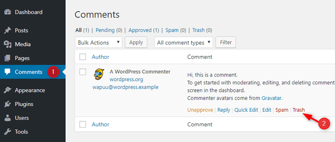 delete-default-wordpress-comment