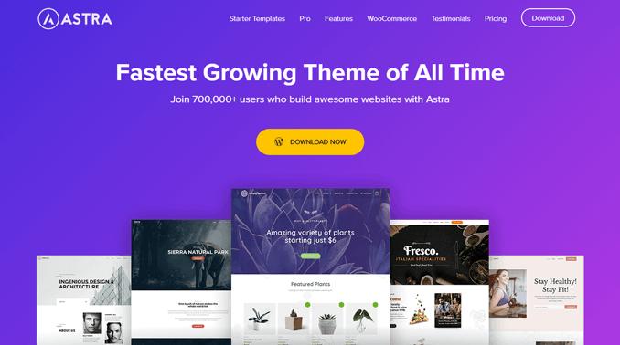 astra-multipurpose-customizable-wordpress-theme